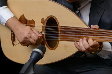 Hands of Musician Playing Note on Lute