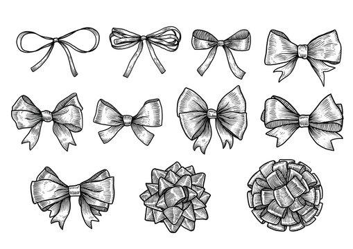 Bow, ribbon illustration, drawing, engraving, ink, line art, vector