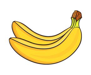 Hand drawn bananas set, isolated on white background. Decorative doodle vector illustration