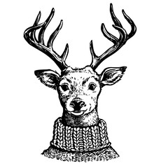 Ink drawing of reindeer in knit sweater