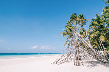 Bamboo hut with fresh green palm trees around standing at the white sand beach against background with beautiful sea and cloudless blue sky on a sunny day.