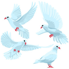 White doves on white background / Four white doves in cartoon style