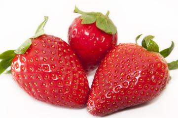 Perfect strawberries