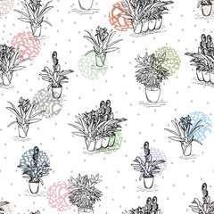 Seamless pattern in drawn flowers in pots. Colorful vector