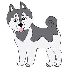 Vector Cute Cartoon Husky. Husky Vector Illustration.