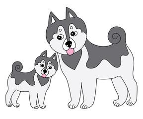 Vector Cute Husky with Puppy. Vector Dogs. Husky Vector Illustration.