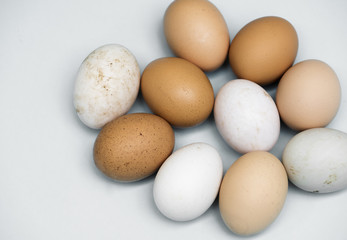 Closeup of fresh organic various eggs