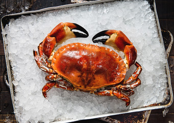 cooked crab on ice