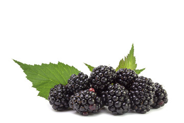 A bunch of ripe luscious blackberry berries