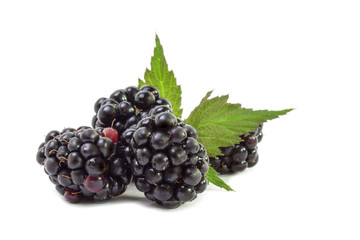 Mature dark juicy blackberry berries
