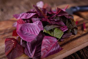 cut fresh spinach on wooden board