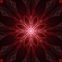 Dark red mandala