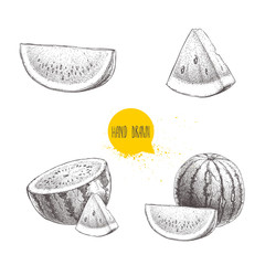 Set of hand drawn sketch style watermelons and watermelon slices. Vintage design fruits. Organic summer food illustrations isolated on white background.