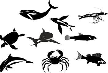 Monochrome color Marine life vector set