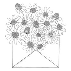 Chamomile in an envelope. Coloring book page for adult and children. Black and white. Doodle style. Vector Chamomile wild field flower.