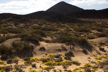 Yellow sand on desert landscape. Panorama view. Fuerteventura, Canary islands