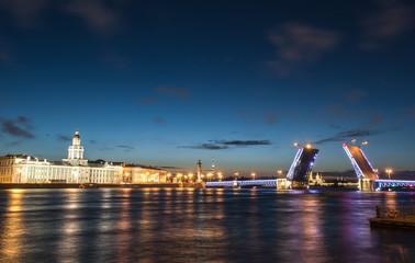 Bridging in St. Petersburg. Night landscape. Night city.