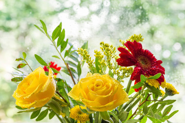 Yellow roses on colorful background