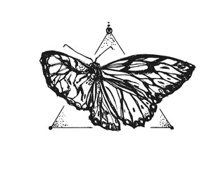 Beautiful butterfly on a white background, in front of triangle. Hipster illustration. It can be used for printing on t-shirts and idea for tattoo or using for logo.
