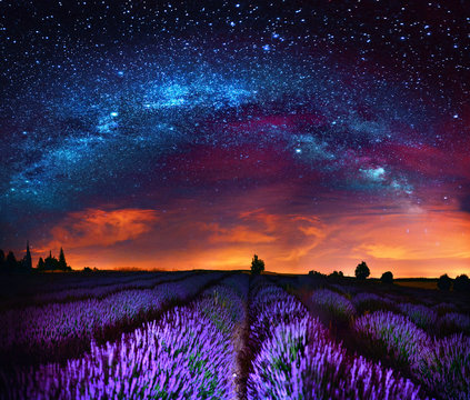 Milky Way over lavender field, France