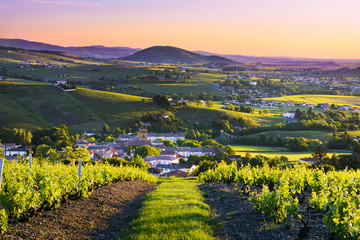 Landscape and Brouilly hill at sunrise