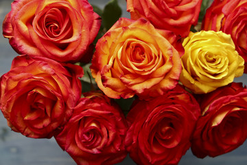 Bunch of red and yellow roses on grey background
