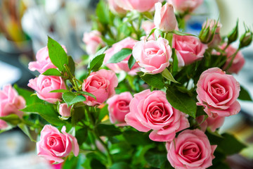 Romantic bouquet of pink garden roses on blurred background for posters, prints, wallpaper, greetings, invitations, wedding, cards, scrapbooking, birthday, date, gifts, presents