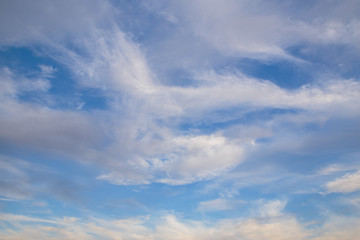 Russia, time lapse. Formation and rapid movement of white clouds of different shapes in the blue sky in late spring at sunset.