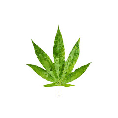 polygonal marijuana leaf