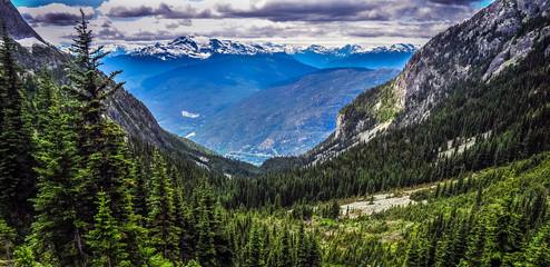 Wedgemount trail, Whistler, British Columbia, Canada - July 2017 Wall mural