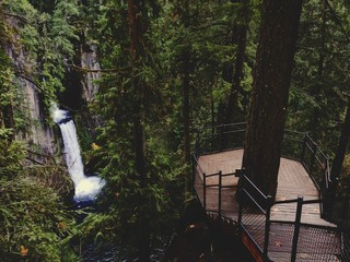 Waterfall Lookout