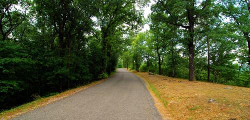 Oak Mountain Drive / View from Oak Mountain State Park near Birmingham, Alabama