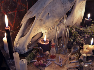Witch table with black candle, horse skull, magic bottles and paper scrolls. Mystic Halloween still life