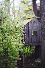 Secret treehouse through the trees