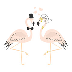 Beautiful pink flamingo couple wedding card on white background