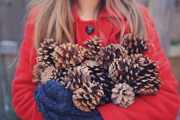 Arms Full of Pinecones