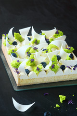 Contemporary Lemon Tart with Cream Cheese and Blueberries decorated with pieces of Sponge Moss Cake, on dark background.