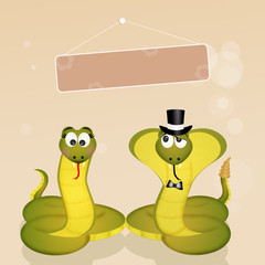 couple of snakes