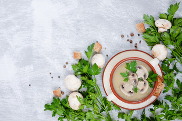 Fresh mushroom soup with green parsley, bread and pepper