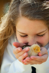 Chicks: Young Girl Kisses Baby Chicks