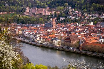 Heidelberg City View with Castle
