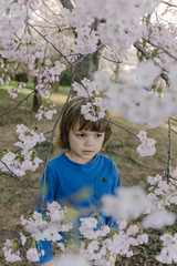 Young boy portrait with Cherry Blossoms in Washington DC