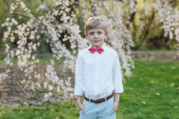 spring portrait of a young boy