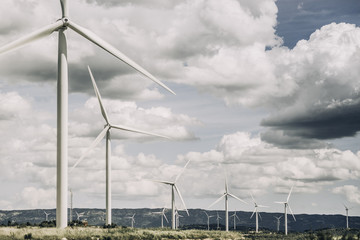 Landscape of an wind farm.