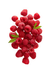 Fresh Raspberries With Leaves on White Background