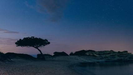 Seaside landscape at night