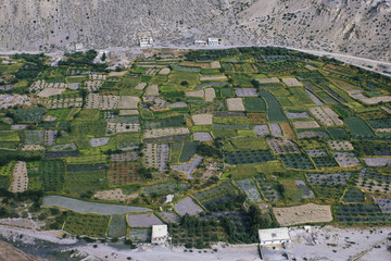 Agricultural fields in upper mustang valley in Nepal.