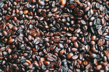 View of coffee beans