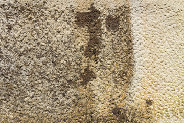 Hand-carved brown stone; wall, facade, floor - background, pattern.