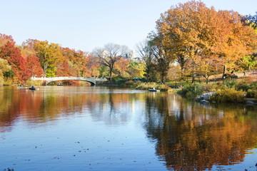 Autumn scene of Central park in New York, USA
